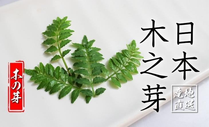 【台北濱江】經典傳統日式辛香食材!味覺大開!╣日式蔬菜新上市╠ 日本木之芽