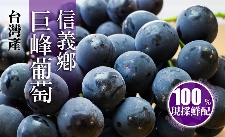 【台北濱江】聞名全台!圓潤飽滿的信義鄉巨峰葡萄1kg裝