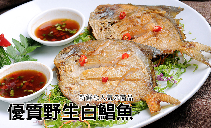 【台北濱江】嚴選生凍大白鯧魚500-600g隻