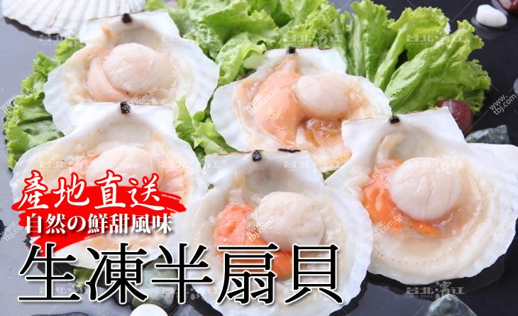 【台北濱江】一秒變大廚~煎煮蒸烤都美味!柔滑細緻又鮮甜多汁~生凍半扇貝小300g裝