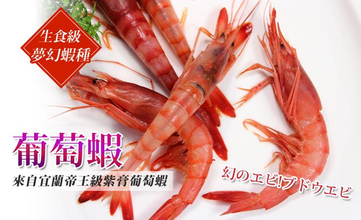【台北濱江】珍貴稀少,蝦膏呈葡萄紫,生食級夢幻蝦種~宜蘭葡萄蝦1kg/箱(約26~30隻)
