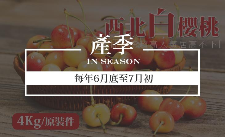 免運【台北濱江】產量只有紅櫻桃的5%!極其珍貴稀少~9.5ROW美國空運西北白櫻桃4kg箱(原裝件)