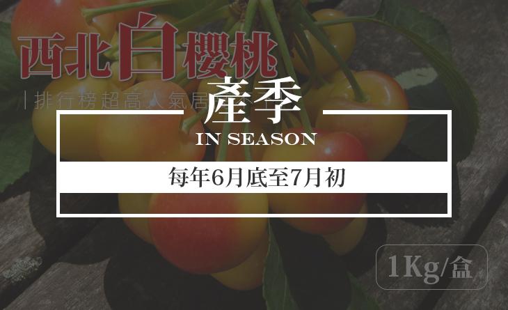 免運【台北濱江】產量只有紅櫻桃的5%!極其珍貴稀少~9.5ROW美國空運西北白櫻桃1kg/盒