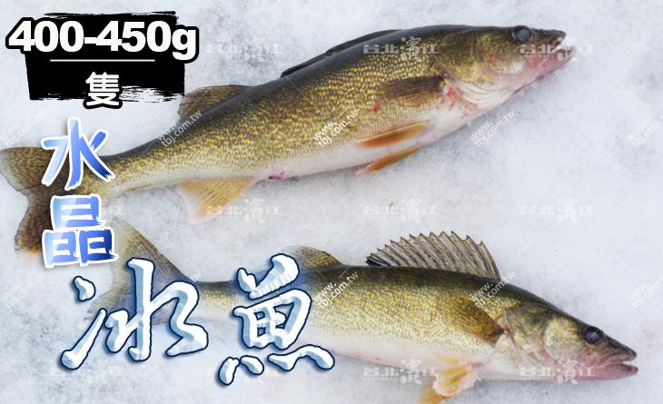 【台北濱江】一吃就上癮!高級海味食材~吃了還想再吃~水晶冰魚400~450g隻