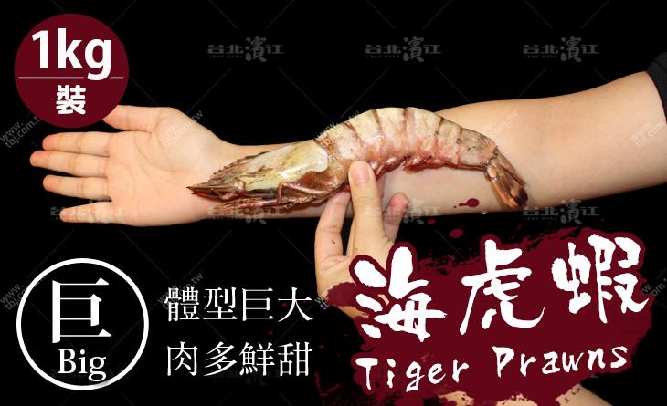 【台北濱江】跟手臂一樣長~肉質超飽滿媲美龍蝦?稀有食材~野生菲律賓海虎蝦1kg裝(約7-8隻)