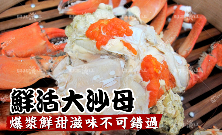 超人氣鮮活大沙母500-600g/隻x2隻~清蒸吃原味超讚!濃濃蟹黃大口吃