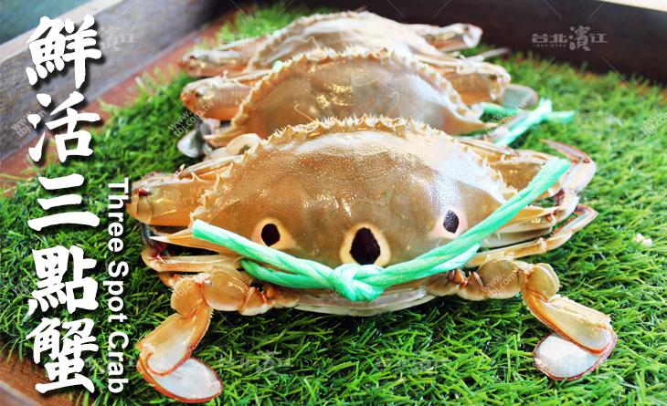 野生萬里鮮活三點蟹3台斤裝(約5~6隻)CP值超高!漁民老饕嘴裡的蟹中極品