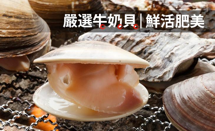 【台北濱江】鮮活嚴選牛奶貝 1台斤±10%/包(約8個)肥美鮮嫩、口感滑順~饕客最愛!