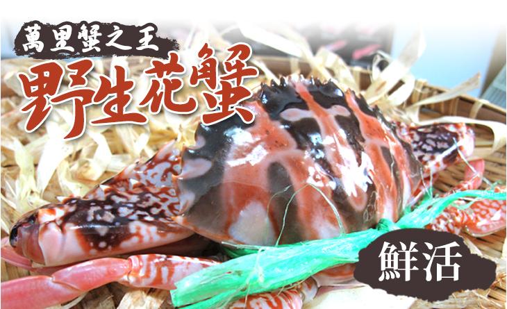 萬里蟹之王鮮活野生花蟹,3台斤裝(約5~6隻)~肉質雪白豐厚自然鮮甜,纖維細膩