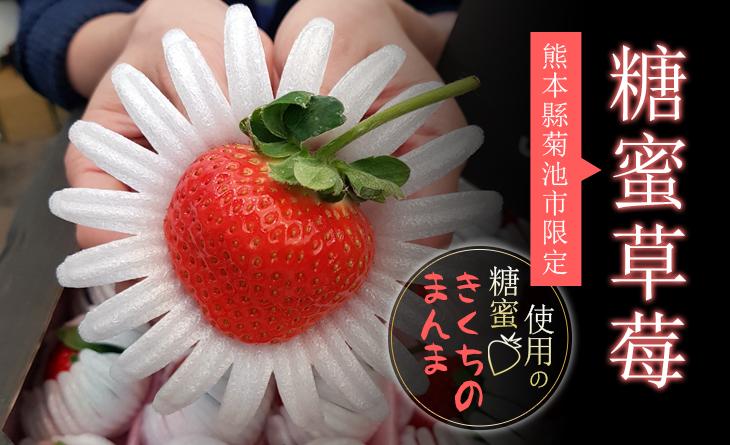 【台北濱江】糖度?高?甘?-熊本限定-糖蜜草莓原裝件1.2kg/盒(24玉入)