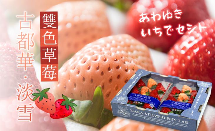 果汁?芳香【台北濱江】雙色草莓-古都華?淡雪草莓原裝件2小盒/箱(18玉入)