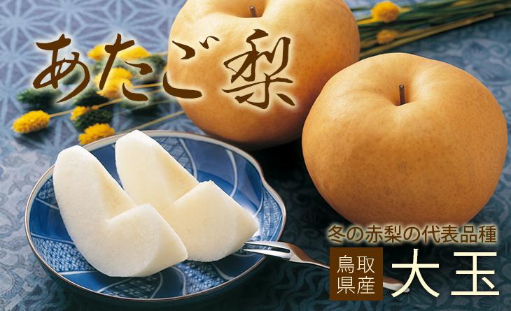 【台北濱江】極大玉日本鳥取梨4.2kg/箱(5-6顆入)~日本最大的赤梨,碩大無比的果實超霸氣!