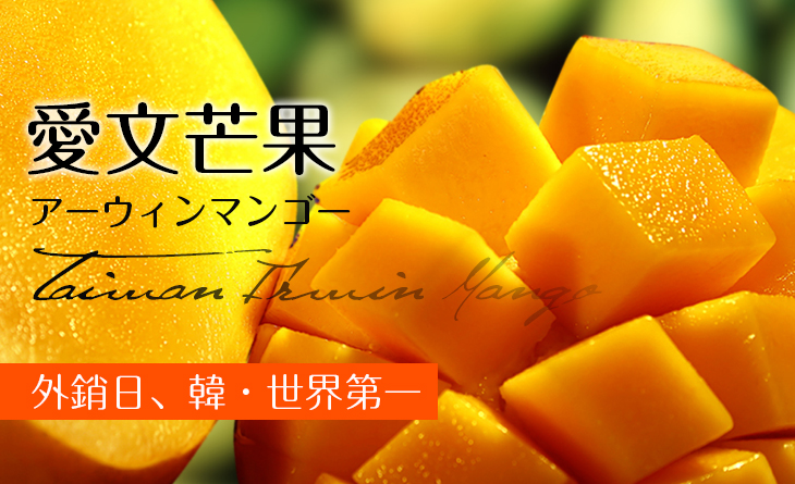 【台北濱江】外銷品種!超人氣!上選愛文芒果6kg(15-18顆入/箱)