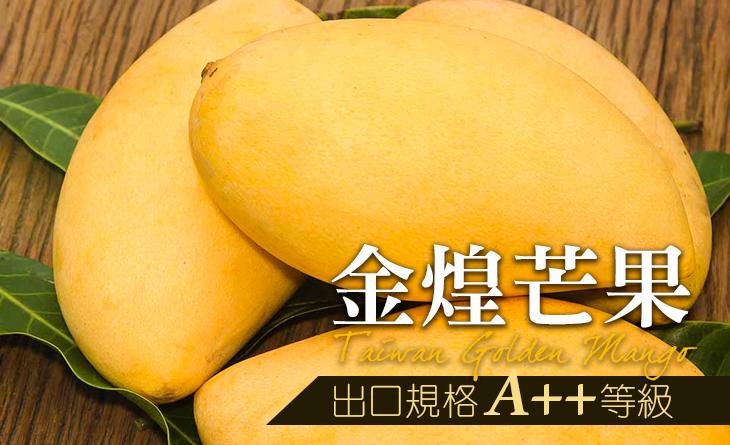 【台北濱江】台灣金煌芒果[出口規格A++等級]6kg/箱
