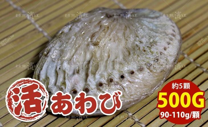 【台北濱江】空運直送~Q彈鮮甜~吃了就無法忘懷的好滋味~南非活鮑魚90-110g/顆_500g約5顆