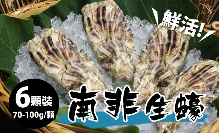 【台北濱江】鮮甜度高,味道溫和容易入口?南非活生蠔70-100g/顆_6顆裝