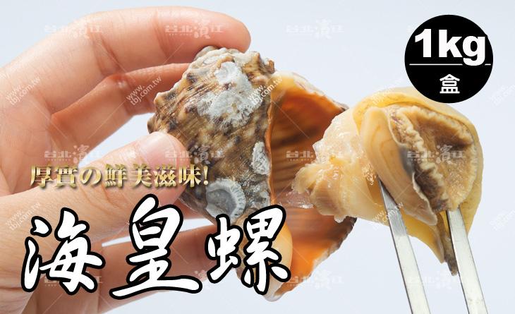 【台北濱江】超Q彈!螺肉大顆厚實~滋味鮮美~頂級首選海皇螺1kg/盒