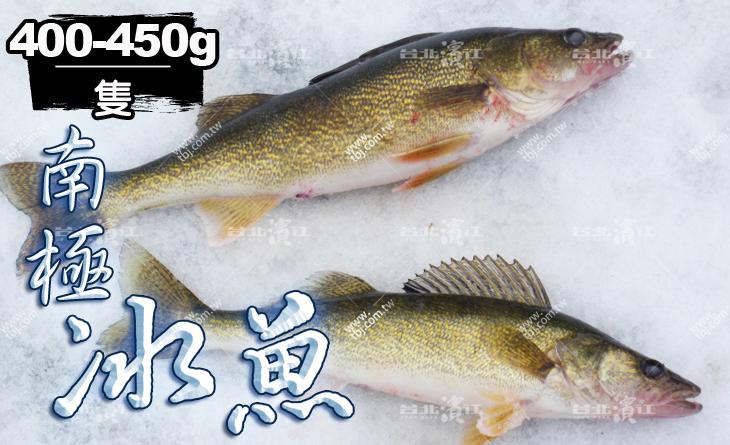 【台北濱江】一吃就上癮!高級海味食材~吃了還想再吃~南極水晶冰魚400~450g隻