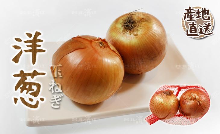 【台北濱江】高貴不貴!?個家中必備的食材!日式蔬菜新上市-洋蔥600g/2顆