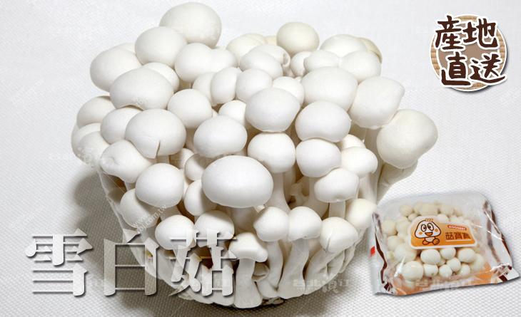 【台北濱江】人見人愛的菇類!粒粒雪白飽滿的嬌小外型!日式蔬菜新上市-雪白菇100g/盒