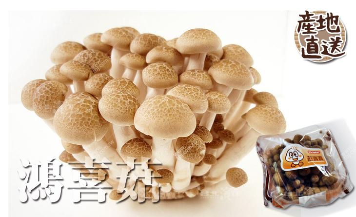 【台北濱江】貴氣又討喜!不塞牙口感極佳!日式蔬菜新上市-鴻喜菇100g/盒