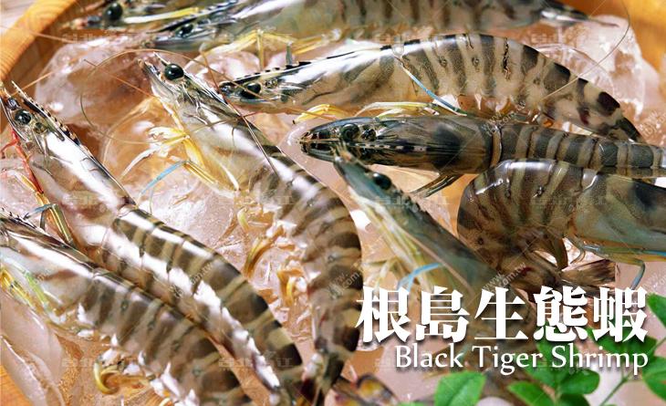 【台北濱江】潮味黑金饕客限定。前所未有的野放鮮甜Q彈-根島生態蝦25隻