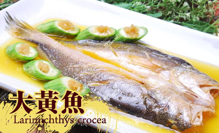 【台北濱江】稀有金黃色澤~?嫩營養~好下手!嚴選大黃魚去鰓去肚470g~500g隻
