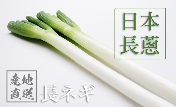 【台北濱江】超巨大!口感細緻美味甘甜的長大蔥!╣日式蔬菜新上市╠ 濱江 帝王 蟹日本長蔥