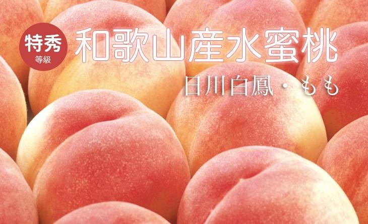免運【台北濱江】完熟多汁!大顆極甜!日本和歌山水蜜桃4kg濱江 國 中/15顆裝/箱(原裝件)